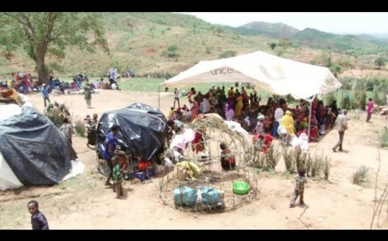 UN says '800,000 forced to flee' violence in Southern Ethiopia