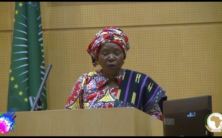 Remarks by the Chairperson of the African Union Commission