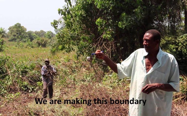 Agricultural Business Centres — Fueling Growth in Sierra Leone