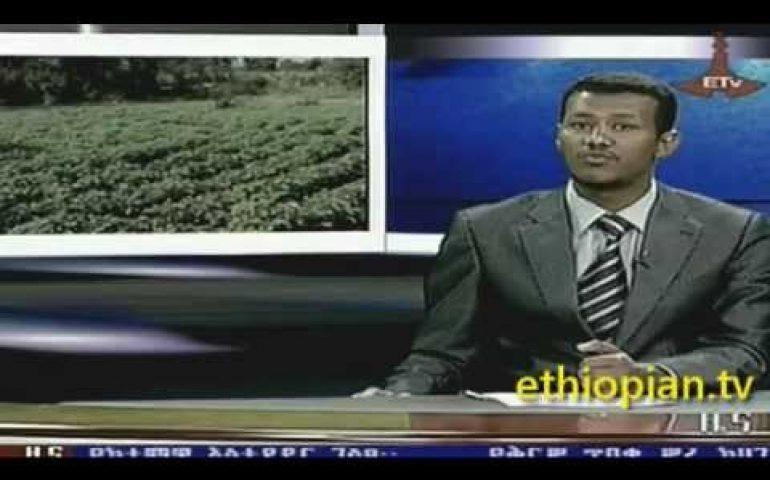 Ethiopian News in Amharic – Saturday, December 29,  2012