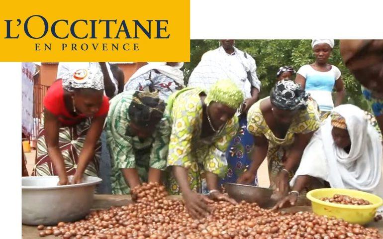 Fantastic Provence – Shea Butter: The Gold of Burkina Faso's Women   L'Occitane